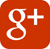 Google plus logo - woodingdean in business