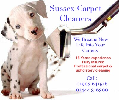 Sussex Carpet Cleaners